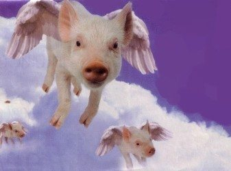Flying_pigs