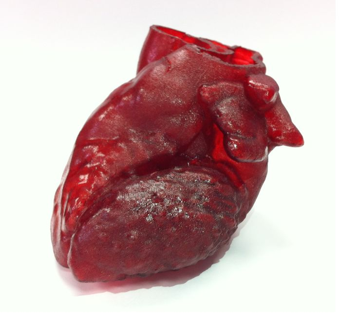 3D-printed_heart-2